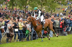 Shane ROSE AUS (TAURUS (RESERVE)) (SimonHall2012) Tags: world horses horse france star pin cross 4 country games fei du crosscountry cc le normandie normandy equestrian cci weg 2014 3day eventing haras worldequestriangames 3dayeventing harasdupin alltech weg2014 cci4star