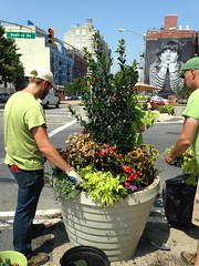 Post Plaza - Summer Planting