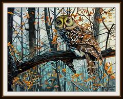 Waldkauz (Strix aluco) (LOMO56) Tags: gemälde eulen strixaluco raubvögel fotorealismus waldkauz acrylgemälde tiergemälde waldkauzstrixaluco raubvogelgemälde