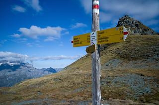 Wildmadfurggeli . 2294 m