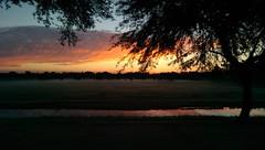 IMAG0141 (snish) Tags: camera arizona nature one duo smartphone m8 chandler htc sooc