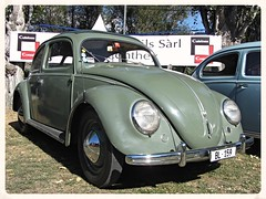 VW Beetle Split Windows (v8dub) Tags: auto old windows classic car vw bug volkswagen automobile beetle automotive voiture german cox oldtimer split oldcar collector kfer coccinelle kever fusca aircooled wagen pkw klassik maggiolino bubbla worldcars