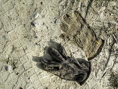 guanto_impronta_Arignano2017_IMG_0107 copia2 (stegdino) Tags: sms guanto impronta decay alone orma terra sign