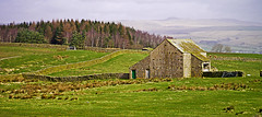 Yorkshire Landscape with Field Barn and Forest - Near Wigglesworth. (wontolla1 (Septuagenarian)) Tags: field barn barns paythorne wigglesworth halton walking walk hiking hike yorks yorkshire panasonic45200mmf456ois attamire scar sugar loaf hill