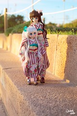 Welcome Spring ~ (Orchid Dolls) Tags: kimono dolls dollfiedream minidollfiedream mini dollfie dream kawaii