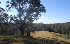 3 DP601640, 165 Richards Road, Newee Creek NSW