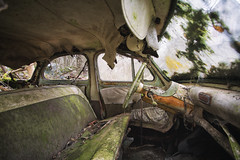 First lesson (Post-Mortem (Alexandre Katuszynski)) Tags: urbex urbanexploration ue urbexfrance panhard abandoned abandonné carsgraveyard cargraveyard olscars abandonedcars lostplaces lowlight verlassen forgotten decay derelict decayed rusty rotten naturereclaimed nature