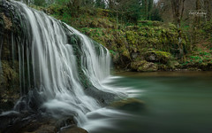 Cascades du hérisson 2 (cedric.chiodini) Tags: cascade waterfall eau water cascadeduhérisson canon 1dx foret arbre tumenervesgrave staiirritante eteperilfatto tiodio