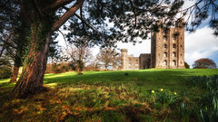 Sunshine (Einir Wyn Leigh) Tags: castle history landscape colour nature nationaltrust tree building spring outdoors clouds nikon march explore walking wales cymru uk