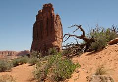 Arches National Park, USA 2011 - 11 (Manfred Lentz) Tags: usa vereinigtestaatenvonamerika utah archesnationalpark nationalpark