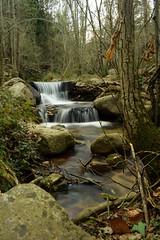 Riera de Riells (Hachimaki123) Tags: paisaje landscape montseny parcnaturaldelmontseny río rio river riera rieraderiells cascada water agua waterfall