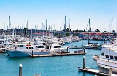 San Diego-179 (marnipatterson) Tags: harborisland sandiego southerncalifornia