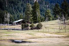 The barn (Jessie T*) Tags: paullakeroad kamloopsbc canada ranch barn fence