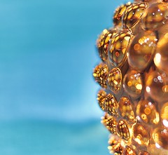 H. G. Wells - Glass and Cloth (phil_1_9_7_9) Tags: abstract fullframe hmm hgwells orangeblue orange macro waroftheworlds glass bokeh colourful nikond700 space afnikkor35mmf2d 35mm orangeandblue blue macromondays alien negativespace light reflections reflecting