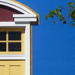 telegraph ave color (msdonnalee) Tags: architecturaldetail facade facciate fachada façade leaves branch brick bluebrick