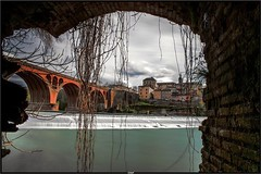 View of the Pont Neuf from under the roots (Steff Photographie) Tags: albi city bridge art artpix canon6d hdr