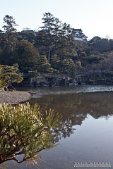 Hikone Castle On The Hill (DMeadows) Tags: davidmeadows dameadows davidameadows dmeadows japan japanese hikone castle history historic defence tourist tourism visit asia trip travel building buildings architecture water reflect reflection reflections tree trees wood woodland wooden leaves garden gardens