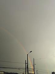 No. 1431 - 21 de abril/17 (s_manrique) Tags: arcoiris postes cables cielo