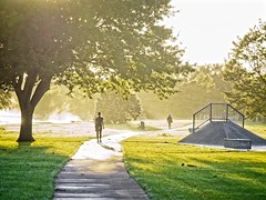 Anderson Park, Napier, New Zealand (NOLLUVDI) Tags: napier nz morning sunrise