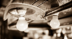 bulbs sepia (steve: they can't all be zingers!!! (primus)) Tags: afsdxnikkor35mmf18g primelens primenikkorlens prime nikond610 nikon d610 fxcamera fx nikonfx sepiatone sepia monochrome taiwan taichung lightroom lightroom6