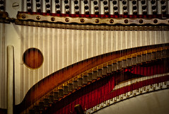 Liberace's Dental Floss (hutchphotography2020) Tags: liberace piano pianowires keys antique screws nikon hutchphotography
