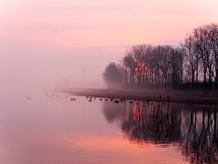 morgens  an der Elbe/ Explore 15.4.2017 (sabine1955) Tags: sunrise elbe fog nebel sonne sonnenaufgang enten
