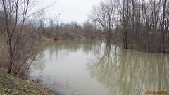Débordement du ruisseau - Gatineau - 2718 (rivai56) Tags: gatineau québec canada débordement du ruisseau sonyphotographing