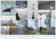 KUSA-0632 (Weinstöckle) Tags: wurmberg kirche katze schneetreiben kirchturm rathaus baumblüte strase verkehrsschild kanaldeckel kran rapsfeld flieder mann schirm obstwiese apfelblüte kirschblüte