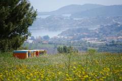Chalkidiki, Greece* (AlexGinger) Tags: landscape chalkidiki halkidiki nature greece nikon natura bees sea plants wild scenery
