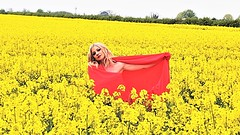 A rare bloom in a sea of yellow (Paul Thackray) Tags: yorkshire westyorkshire oilseedrape yellow professionalmodel 2017