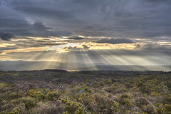 Natural Light Show 20/30 (rmrayner) Tags: hdr crepuscularrays dartmoor moorland littlehaldon raysoflight devon clouds landscape countryside gorse 30daysofapril