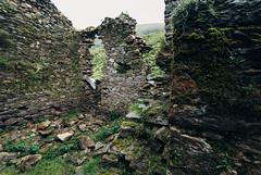 (Tim Gallivan) Tags: ireland kerry ruins stone wall shepherdshouse fog moss grass green emerald