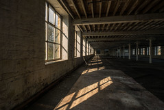 windows and shadows... (salmonmark10) Tags: