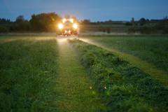 MartenSvensson_IMG_9872 (Bad-Duck) Tags: jordbruk fendt kalmarlantmän kväll livsmedel livsmedelsproduktion slåtterkross solnedgång traktor vall vallskörd öland