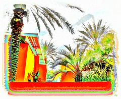 urban oasis (milomingo) Tags: 7 multicolored nature tree palm frond illustrated photoart bright bold vivid vibrant tile onwhite a~i~a stylized oasis urban saguarohotel scottsdale arizona southwest resort art texture grain