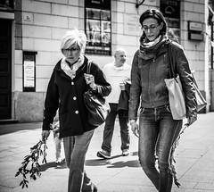 Palm sunday (Henka69) Tags: street streetphoto easter milano monochrome mono bw candid holyweek