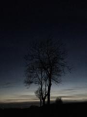 mörkerfotografering (suskon72) Tags: morkerfotografering fotosondag fs170423