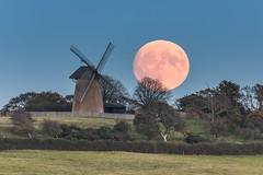 Moonrise at Bembridge Windmill. (Ainsleyiow1) Tags: isleofwight nikond810 nikon200500 bembridgewindmill bembridge supermoon moonrise