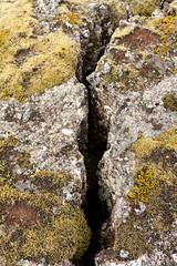 <  > (Fjola Dogg) Tags: naturaleza nature landscape lava iceland islandia natureza natur natuur natura nopeople sland nttra islande izland islanda lanature islndia naturen ijsland naturae naturalesa islanti islando icelandiclandscape izlanda lislande fjoladogg fjladgg islann