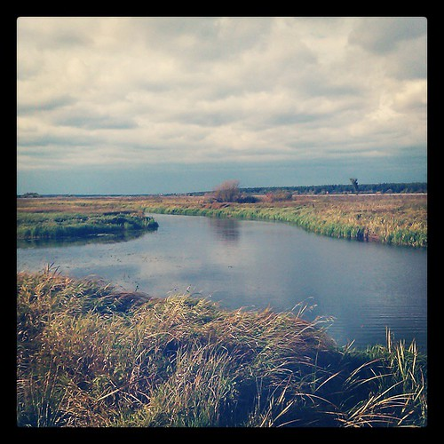 Осенний пейзаж.