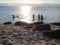 Galapagos - San Cristobal-194