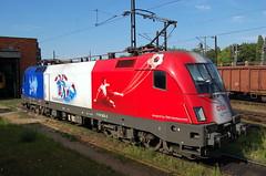 1116.003 (Tams Tokai) Tags: siemens eisenbahn railway loco locomotive taurus bahn railways bb lokomotive lok 1116 vast mozdony