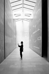 Biennale Architettura 2014 (Shadow13