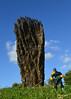 Awe & Dredd (BLTP Photo) Tags: park sculpture detail yorkshire von judge ursula dredd rydingsvard