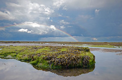DSC_9251 (BiffIncoming) Tags: sea robin rain rock bay coast rainbow day lowtide hoods