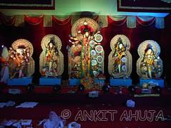 DSCN0563 (ankit10217) Tags: pune durga shakti parvati ambika sati bhairavi katyayani bhuvaneshwari chinnamasta navdurga mahagauri kaalratri siddhidatri kushmanda chandraghanta dhumavati skandamata brahmacharini vaishnomaa shailaputri durgapuja2014 navratri2014 ankitahuja shivaradni bhavaani navratridurgapuja2014