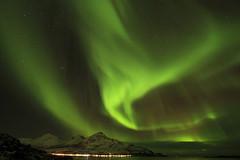Northern Lights in Norway (` Toshio ') Tags: city mountain snow cold green nature norway lights bay harbor europe european norwegian fjord europeanunion northernlights auroraborealis tromso toshio tromvik