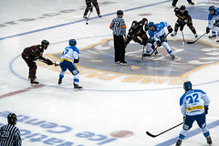 Face off - Nottingham Panthers V Coventry Blaze