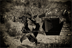 Fence Art (RiverBearPhoto) Tags: arizona art fence us photo wire highway rust desert az monotone jackson leon barbedwire 93 barbed chloride riverbear