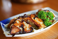 20141007-07-Pork gyoza at Rin in Hobart.jpg (Roger T Wong) Tags: food lunch japanese restaurant australia pork tasmania cbd hobart dumplings gyoza rin 2014 sigma50mmf28exdgmacro sigma50macro sonyalpha7 sonya7 rogertwong sonyilce7